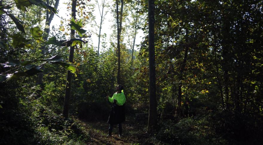 Paisagem Efémera – natural e rural: Iº Ato